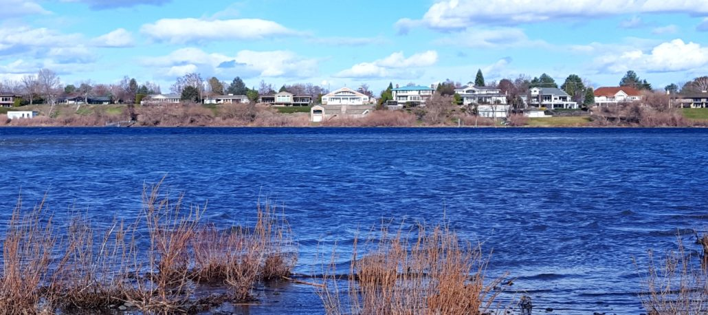 tri-cities waterfront real estate homes